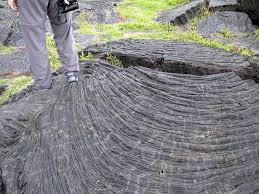 struktur aliran