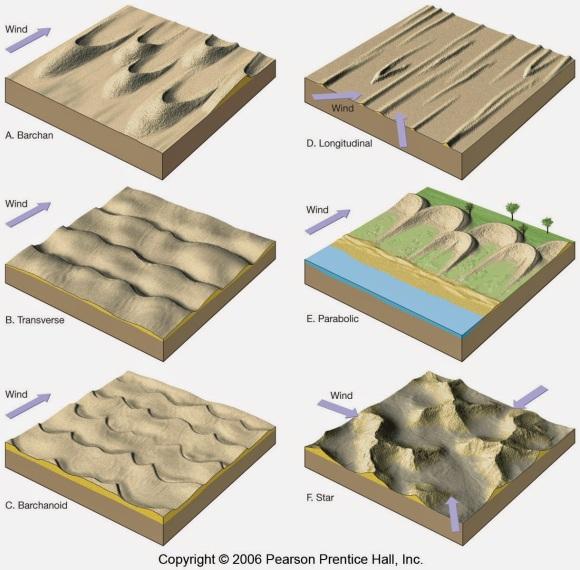 tipe sand dunes